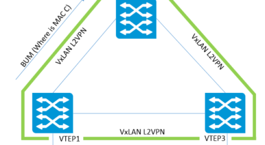 Get in Control of Your VxLAN Traffic