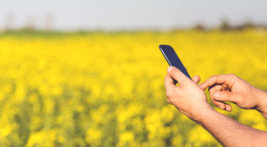 Fighting World Hunger with Digital Agriculture