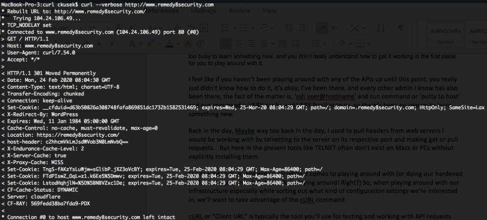 Network API Client URL