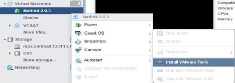 NetEdit: Install VMware Tools